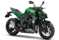 Kawasaki Z1000 2018 10
