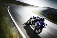 Yamaha YZF R1 2010 09