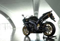 Yamaha YZF R1 SP 2006 14