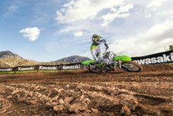 Kawasaki KX250F 2019 15