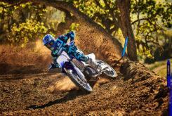 Yamaha YZ250 2019 07
