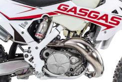 GasGas ECRanger 300 2019 13