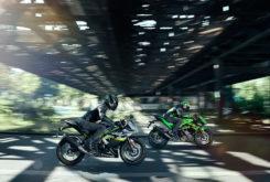 Kawasaki Ninja 125 2019 01