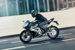 Kawasaki Ninja 125 2019 06