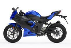Kawasaki Ninja 125 2019 18