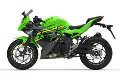 Kawasaki Ninja 125 2019 23