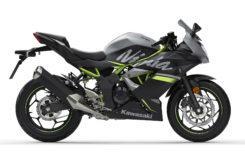 Kawasaki Ninja 125 2019 27