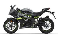 Kawasaki Ninja 125 2019 31