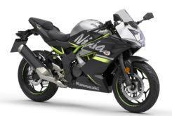 Kawasaki Ninja 125 2019 32