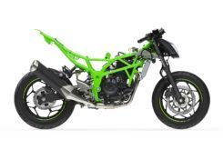 Kawasaki Ninja 125 2019 55