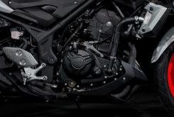 Yamaha MT 03 2019 12