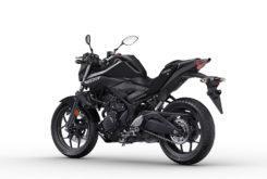 Yamaha MT 03 2019 24