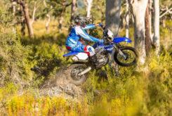 Yamaha WR250F 2019 11
