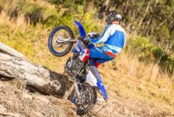 Yamaha WR250F 2019 12