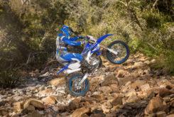Yamaha WR450F 2019 01