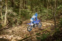 Yamaha WR450F 2019 03