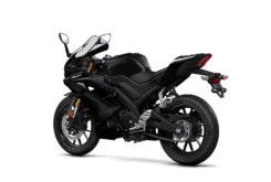 Yamaha YZF R125 2019 42