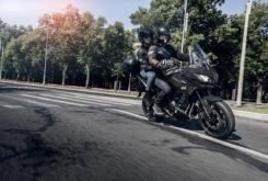 Kawasaki Versys 650 2019 15