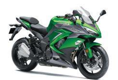 Kawasaki Z1000SX 2019 28