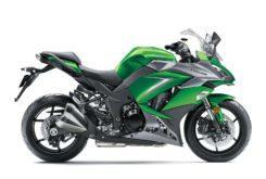 Kawasaki Z1000SX 2019 29