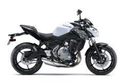 Kawasaki Z650 2019 09