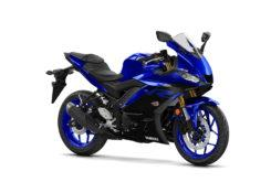 Yamaha YZF R3 2019 21