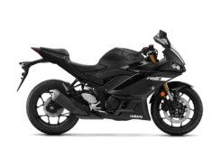 Yamaha YZF R3 2019 25