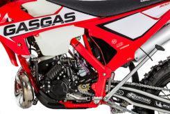 GasGas EnduroGP 250 2019 12