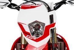 GasGas EnduroGP 250 2019 28