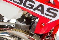 GasGas EnduroGP 300 2019 04