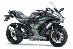 Kawasaki Ninja H2 SX SE Plus 2019 22
