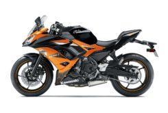Kawasaki Ninja 650 2019 11