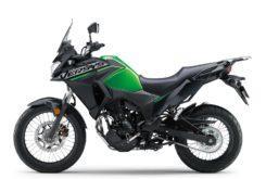 Kawasaki Versys X 300 2019 01