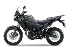Kawasaki Versys X 300 2019 04