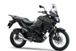 Kawasaki Versys X 300 2019 05