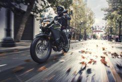Kawasaki Versys X 300 2019 11
