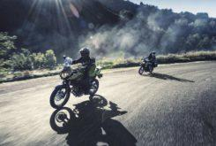 Kawasaki Versys X 300 2019 12