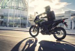 Kawasaki Versys X 300 2019 13