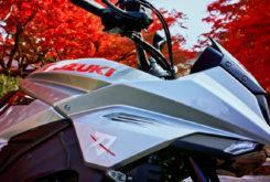 Suzuki Katana 2020 Nobuatsu Aoki opinion (2)