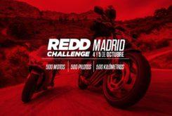 REDD Challenge 2019 consejos