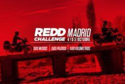 REDD Challenge 2019 plazo inscripcion