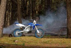 Yamaha WR450F 2020 28