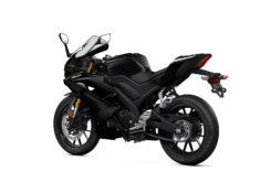 Yamaha YZF R125 2020 38