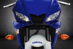 Yamaha YZF R3 2020 14