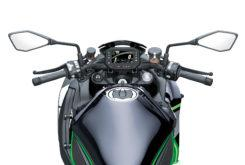 Kawasaki Z H2 2020 21