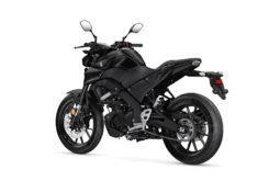 Yamaha MT 125 2020 06