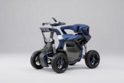Yamaha YNF 01
