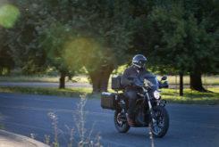 Zero DSR Black Forest 2020 03