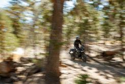 Harley Davidson Pan America Adventure 1250 202015