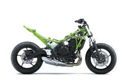 Kawasaki Z650 202016